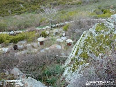 Sierra Alto Rey - Peña Mediodía; senderismo cerca de madrid; grupo de senderismo;rutas